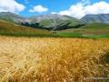 castelluccio-monti-sibillini